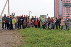 Вологжане высадили деревья в двух микрорайонах города